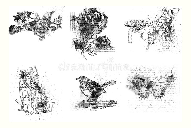 Download Set Of Six Artistic Bird, Flower And Butterflies Stock Illustration - Image: 13538518