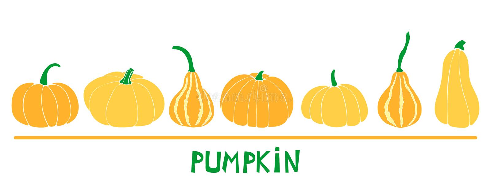 Set with six pumpkins: bottle gourd; cinderella variety; butternut. royalty free illustration