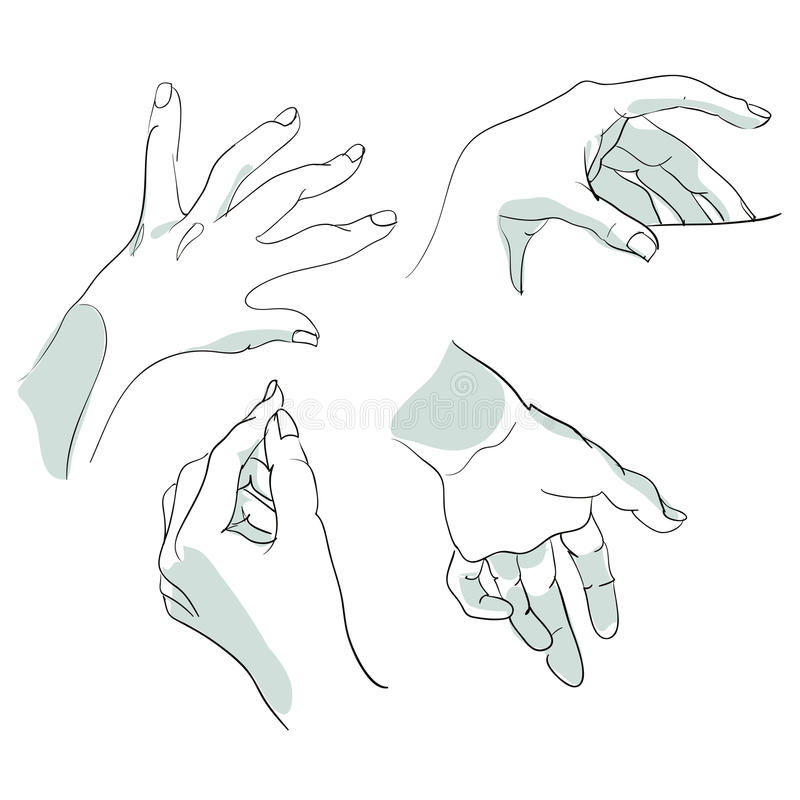 Set of sketches of hands in different positions. Vector illustration stock image