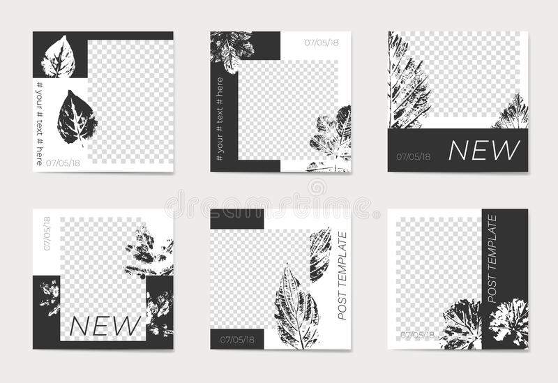 A set of social media post templates. For personal and business accounts. Leaf silhouettes on black and white background. With place for your foto. Promotion royalty free illustration