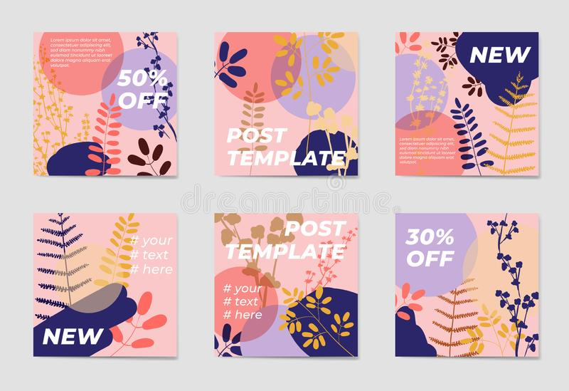 A set of social media post templates. For personal and business accounts. Pink background with geometric elements, drawn plants and a position for photography vector illustration