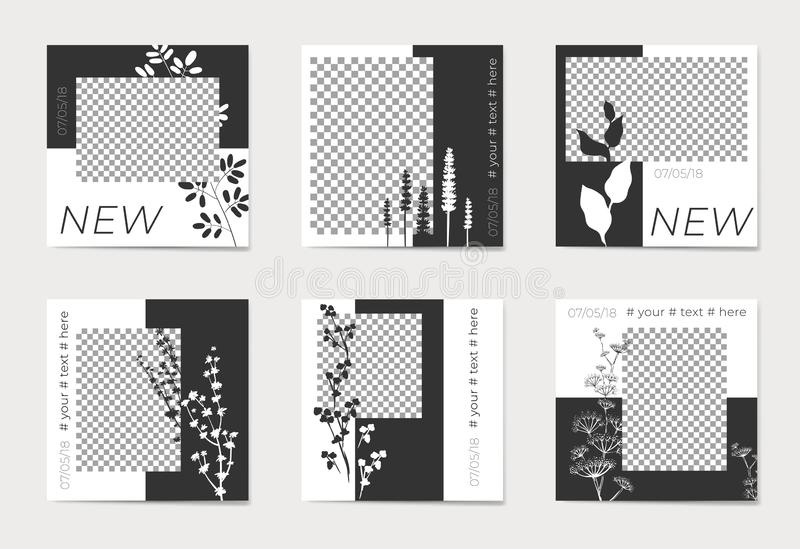 A set of social media post templates. For personal and business accounts. Silhouettes of plants on black and white background. With place for your foto stock illustration