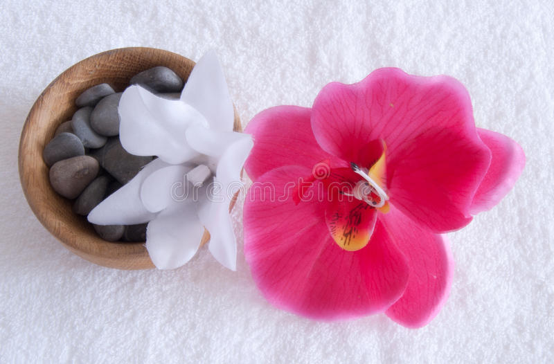 Download A set of spa stock image. Image of beauty, flowers, pink - 23607361