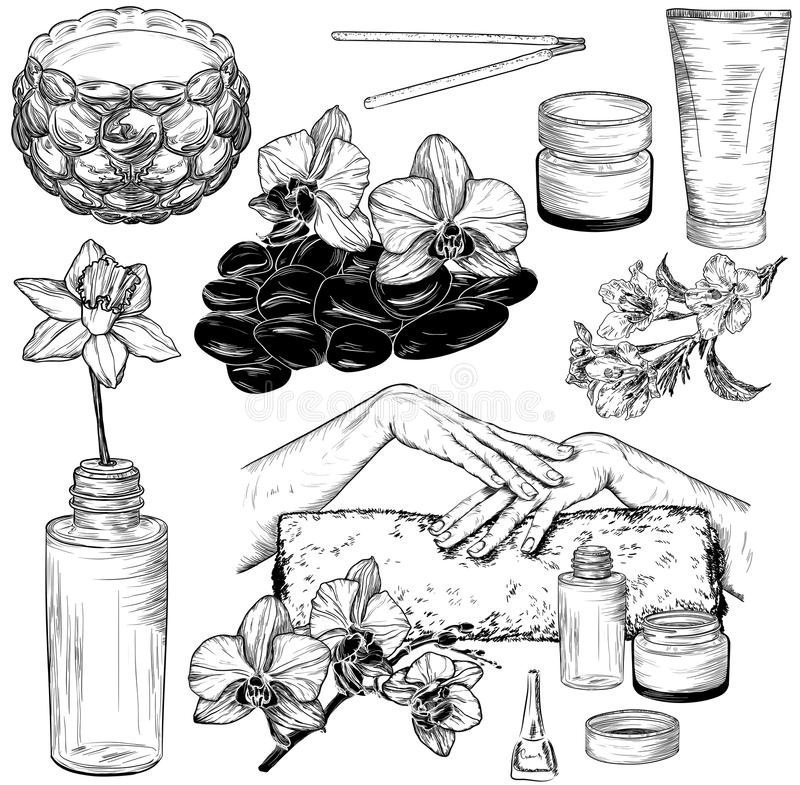Set of spa and manicure illustrations vector illustration