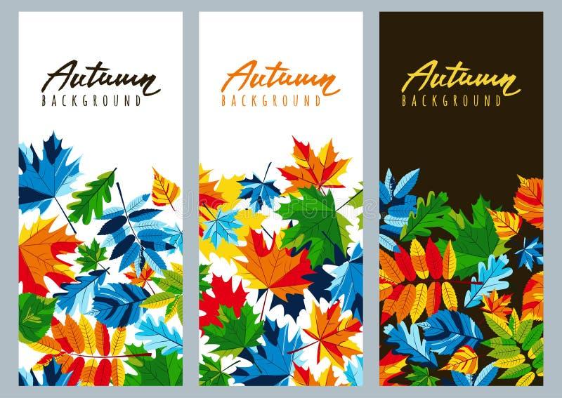 Set spadków sztandary z multicolor klonowymi jesień liśćmi Wektorowe jesienne ilustracje ilustracji