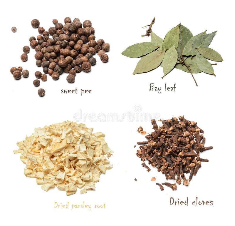 Set of spices of four varieties on a white isolated background. stock image