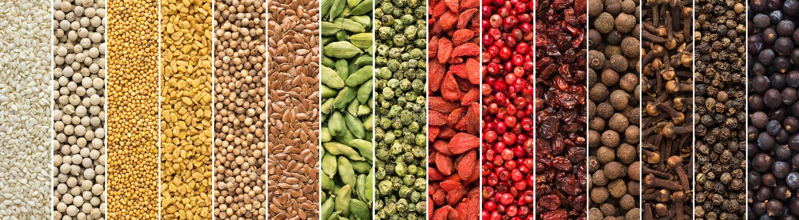 Set of spices and herbs for Indian cuisine. colorful seasoning background for design food packaging stock photography