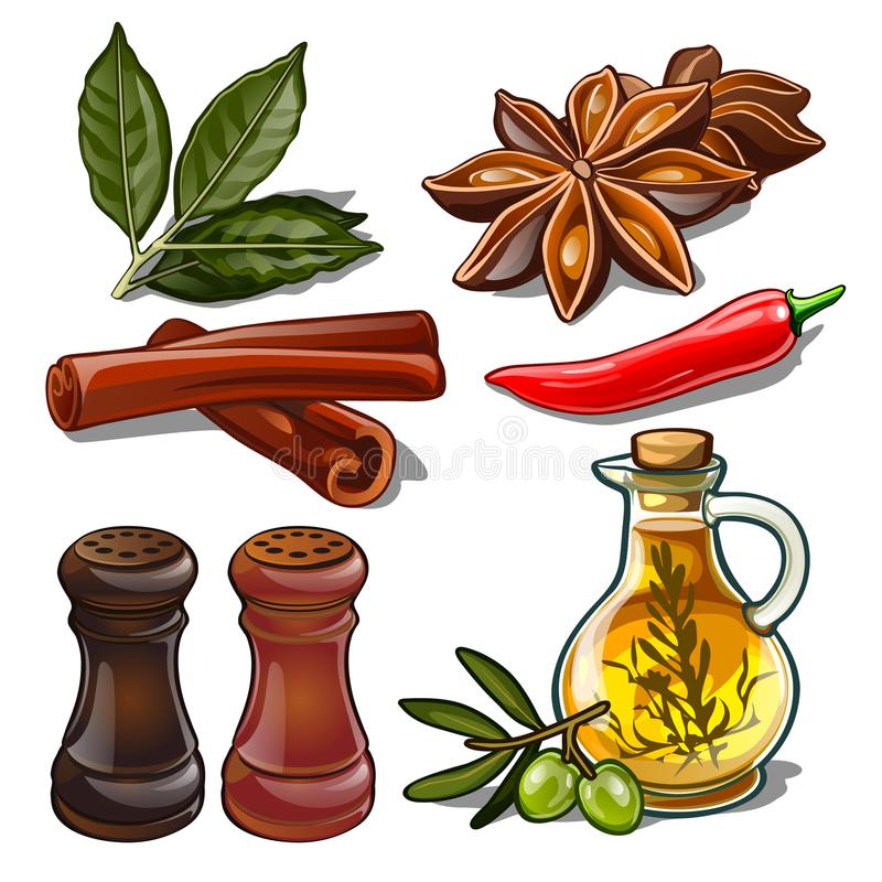 Set of spices isolated on white background. Image of ingredients for a cookbook. Vector illustration. Set of spices isolated on white background. Image of stock illustration