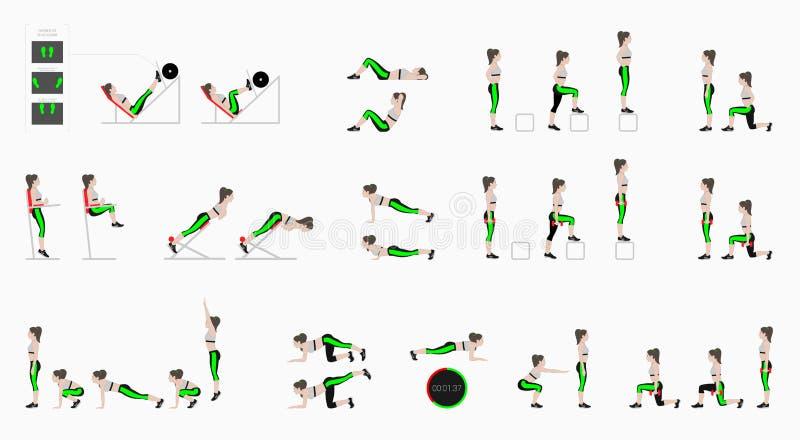 Set sportów ćwiczenia Ćwiczenia z bezpłatnym ciężarem Ćwiczenia w gym Noga podnosi, kucnięcia, UPS, Burpee, deska, Lunges, siedzi ilustracja wektor