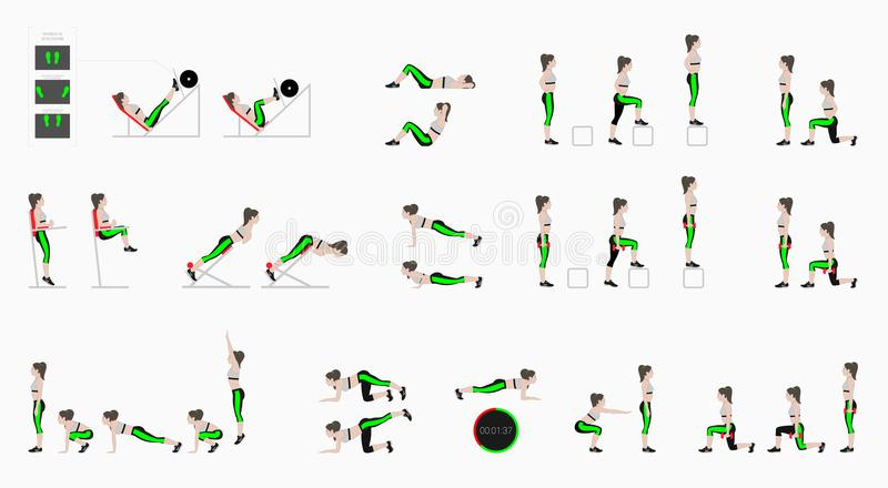 Set of sport exercises. Exercises with free weight. Exercises in a gym. Leg lifts, Squats, Push-Ups, Burpee, Plank, Lunges, Sit-Up. S, Step-Up Hyperextension vector illustration