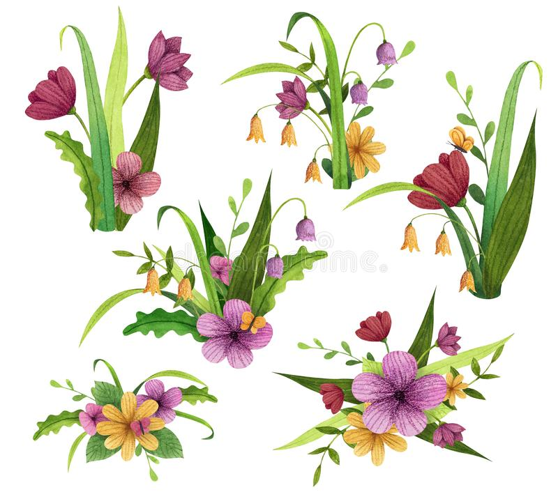 Set of spring, summer garden and forest bouquets with flowers, leaves and branches. Hand drawn watercolor and colored pencils illustration royalty free illustration