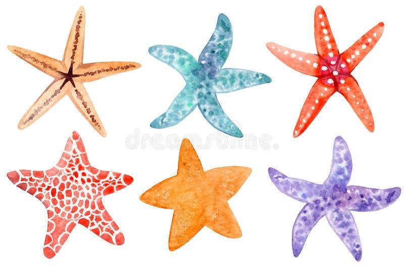 Set of starfish clipart royalty free stock photo