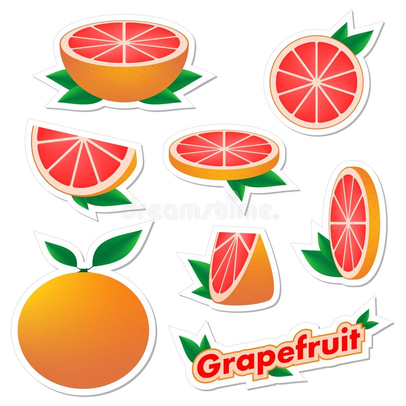 Set stickers of fresh citrus sliced and whole grapefruit fruit with skin with green leaves on a white background. The concept of h. Ealthy eating royalty free illustration