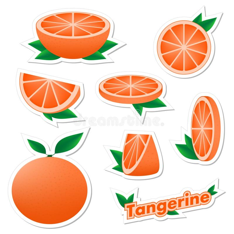 Set stickers of fresh citrus sliced and whole tangerine fruit with skin with green leaves on a white background. The concept of. Healthy eating royalty free illustration