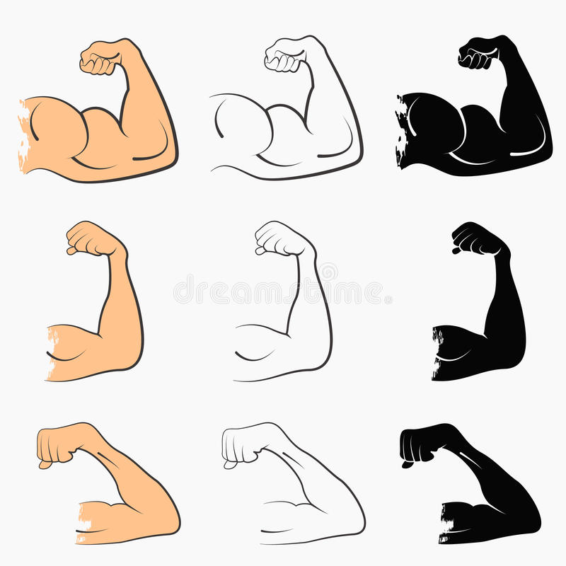 Set strong power. Muscle arms the stages of pumping biceps vector icon royalty free illustration