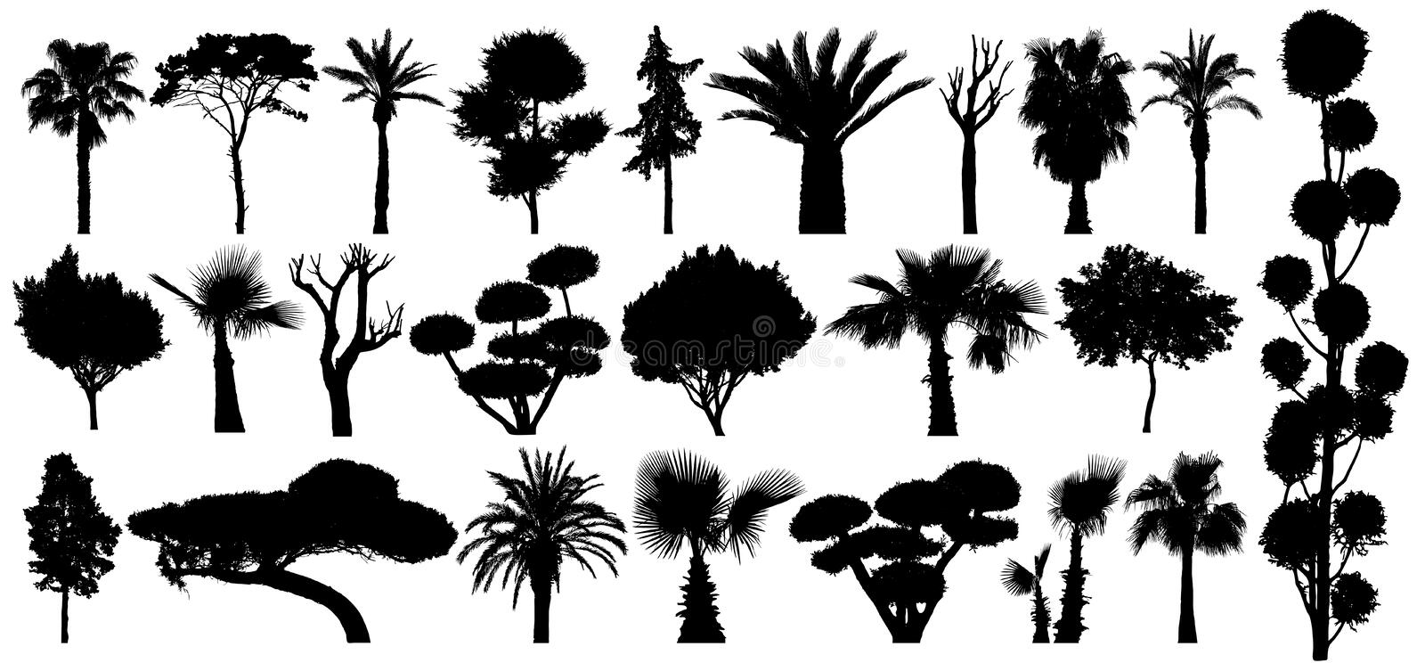 Set of subtropical trees and shrubs. Isolated vector silhouette on a white background.  royalty free illustration