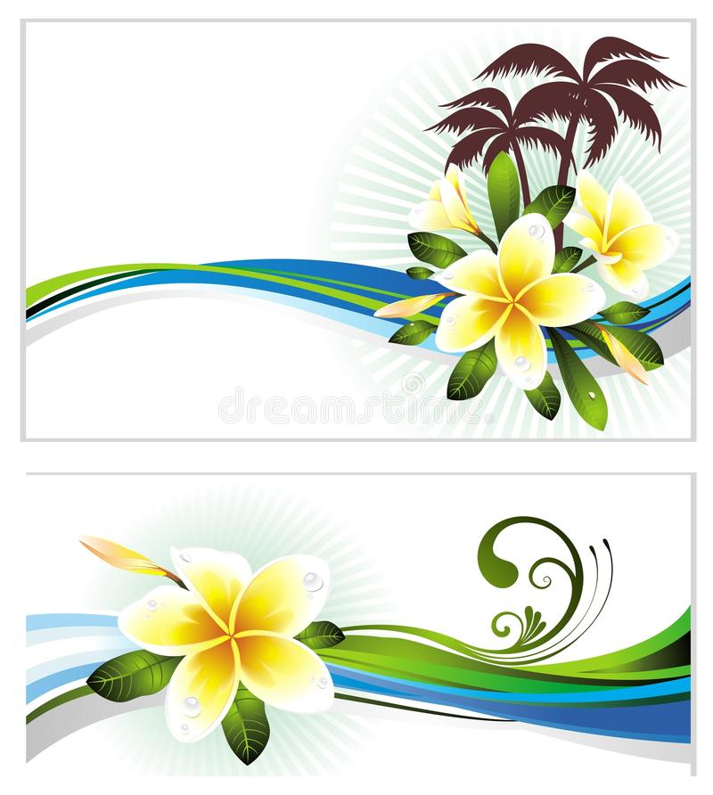 Download Set Of Summer Banners With Flowers Stock Vector - Image: 19084845
