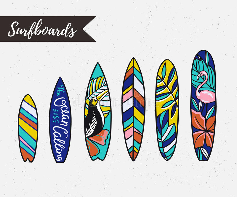 Set of surfboards with tropical plants and birds. Vector objects. stock illustration