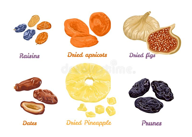 Set of sweet dry fruit snacks. Vector illustration in flat style. Icons collection isolated on white. Dried figs, apricots, pineapples, raisins, dates and royalty free illustration