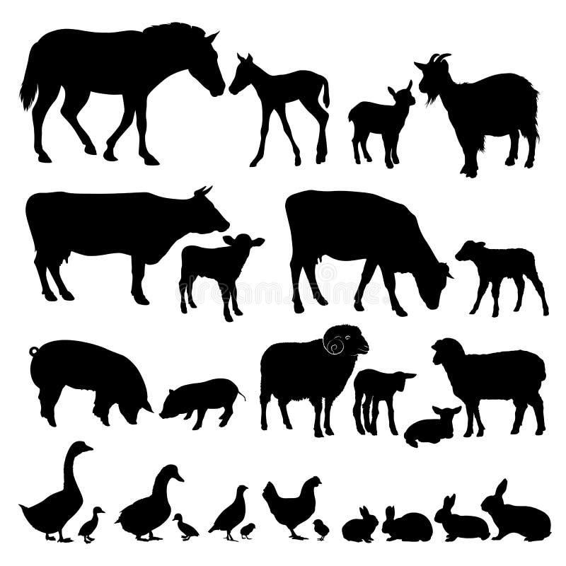 Set sylwetki zwierze domowy zwierząt gospodarstwa rolnego krajobraz wiele sheeeps lato royalty ilustracja