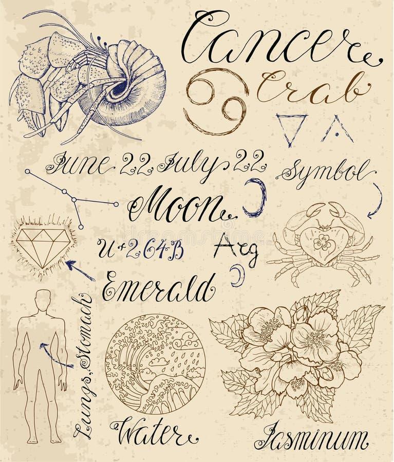 Zodiac Line Art : Set of symbols for zodiac sign cancer or crab stock vector