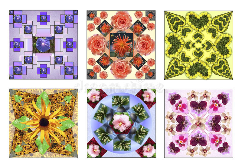 Set sześć kwiecistych kwadratów robić naturalni kwiaty obrazy stock