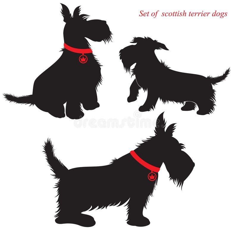 Set szkoccy terierów psy ilustracji