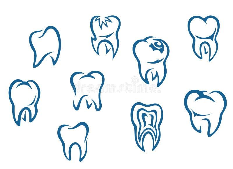 set tänder för human vektor illustrationer