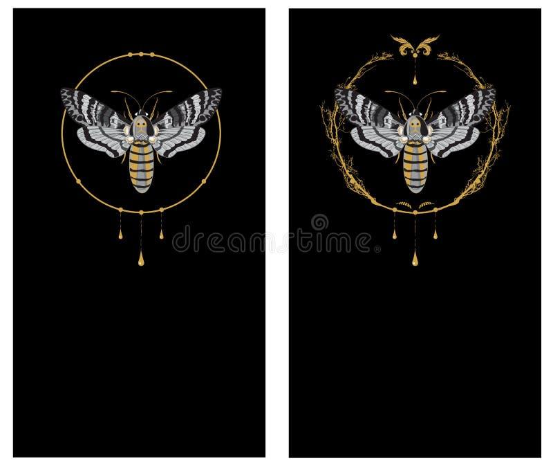 Set tła z motylią śmiertelną głową royalty ilustracja