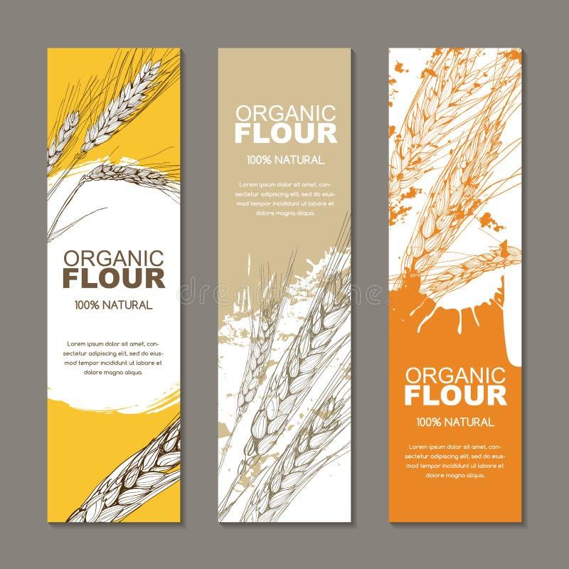 Set tła dla etykietki, pakunek Nakreślenie ręka rysująca ilustracja pszeniczni ucho Rolnictwo, adra, zboże royalty ilustracja