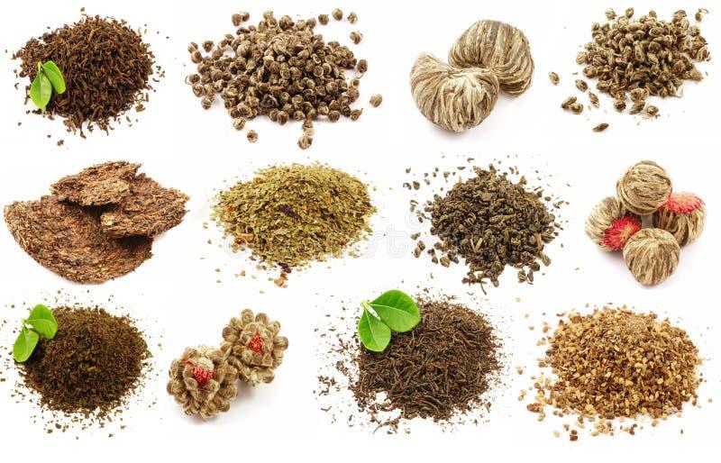 Set of tea royalty free stock image