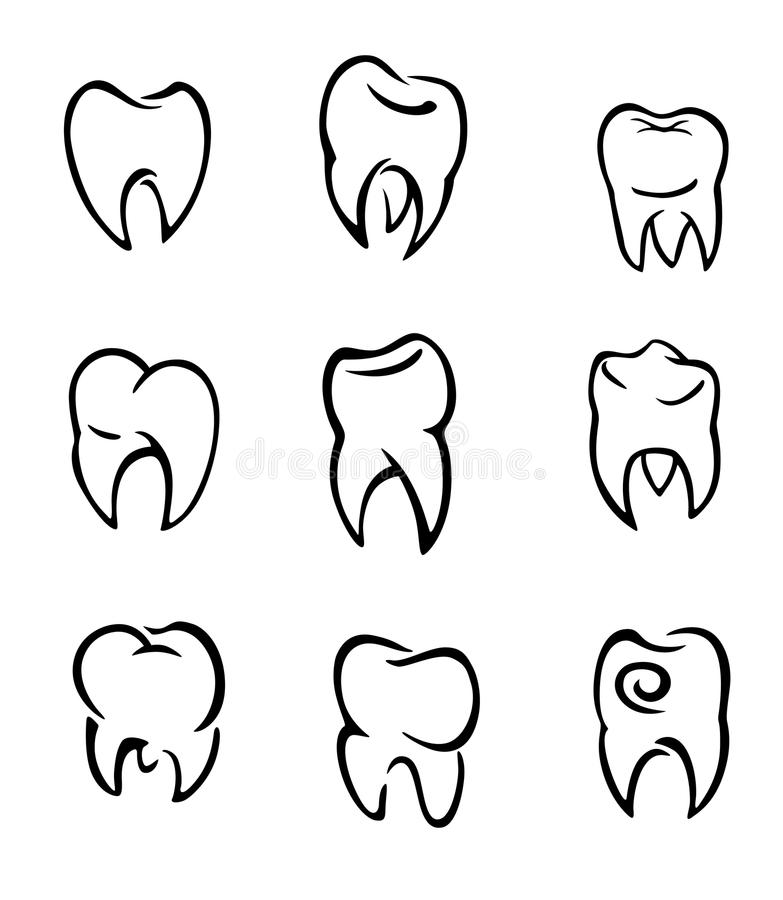 Download Set Of Teeth Royalty Free Stock Photos - Image: 24437108