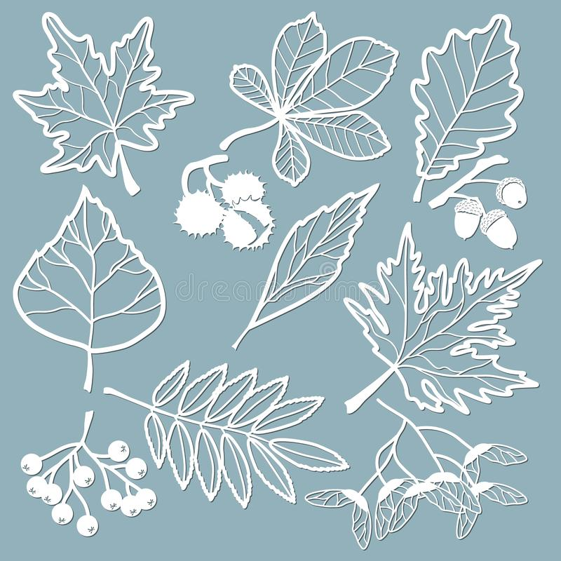 Free Set Template For Laser Cutting And Plotter. Oak, Maple, Rowan, Chestnut, Berries, Acorn, Seeds, Birch, Ash. Leaves For Decoration Royalty Free Stock Photos - 145864748