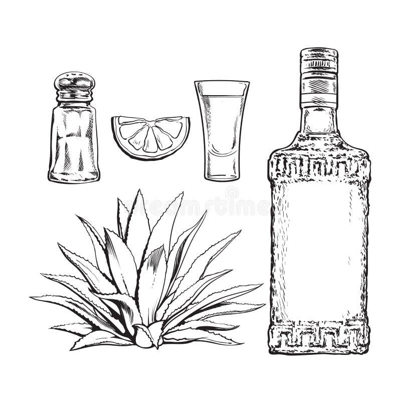 Set of tequila bottle, shot, salt mill, agave and lime stock illustration