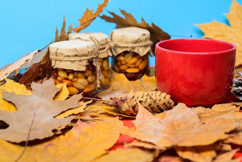 Set three honey natural sweets in jars and mug of tea background covered fallen leaves. Natural homemade treats autumn royalty free stock images