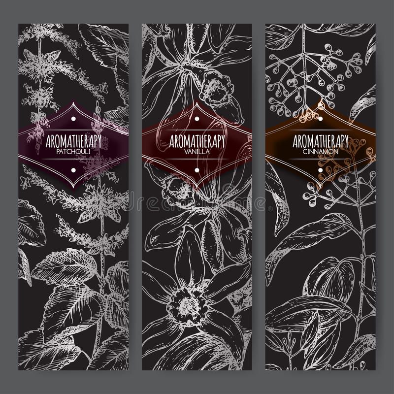 Set of three labels with patchouli, vanilla and cinnamon on black. Set of three labels with patchouli, vanilla and cinnamon on black background. Aromatherapy stock illustration