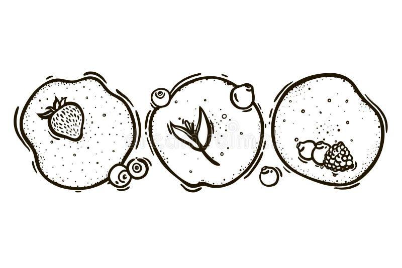 Set of three pancakes with strawberries, blueberries, blackberries, raspberries. Culinary baking. vector illustration