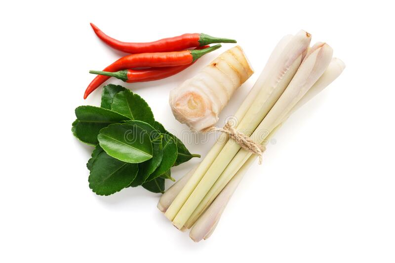 Set of Tom Yum soup main ingredients on white background. Set of Tom Yum soup main ingredients - lemon grass, chilli peppers, galanga root or galangal and kaffir stock photography