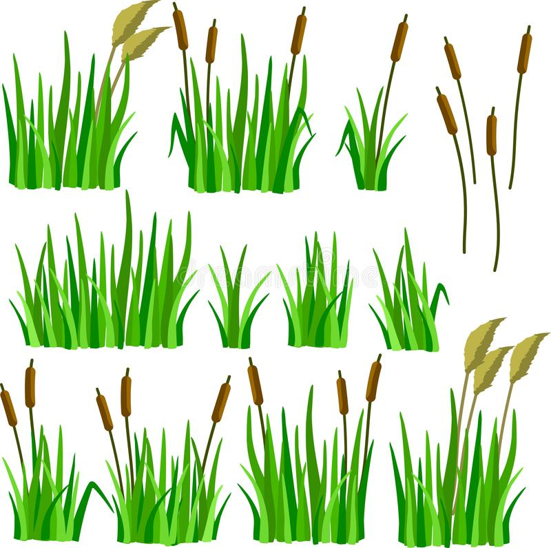 Set trawa, płochy i trzciny kreskówki, obraz royalty free