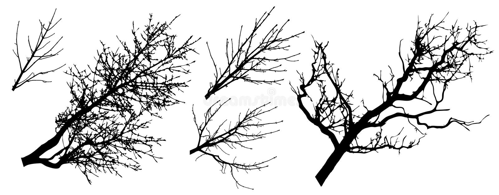 Set of tree branches silhouettes, vector illustration vector illustration