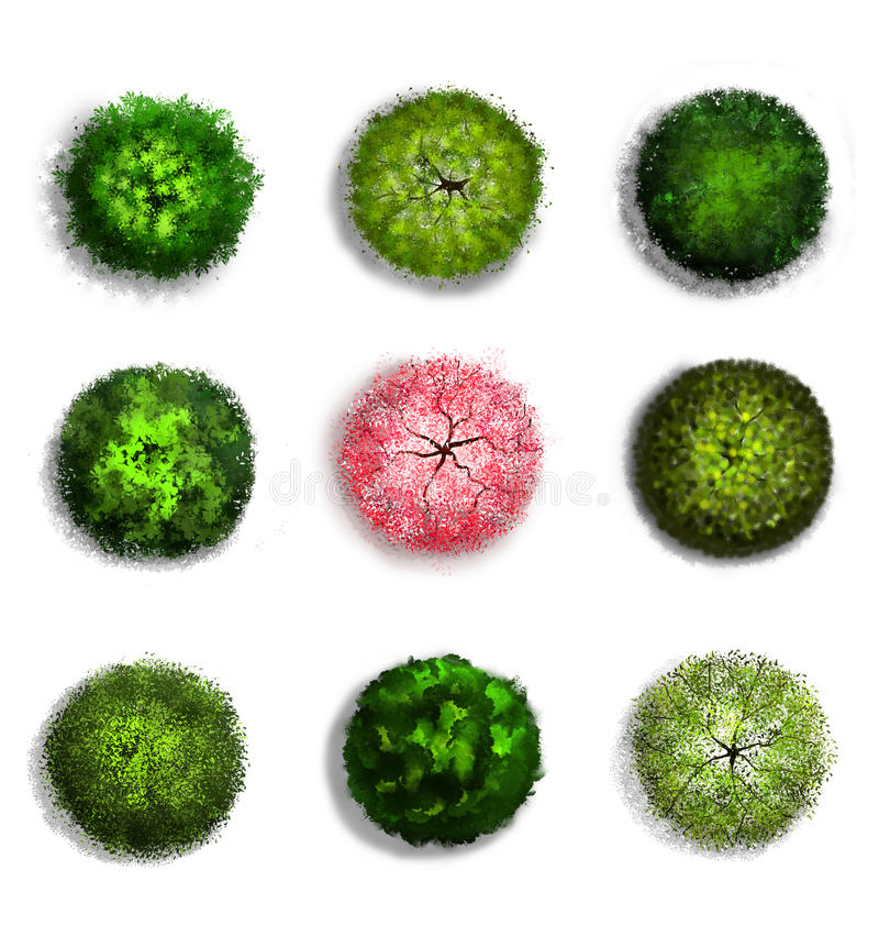 A set of tree top symbols stock vector  Illustration of