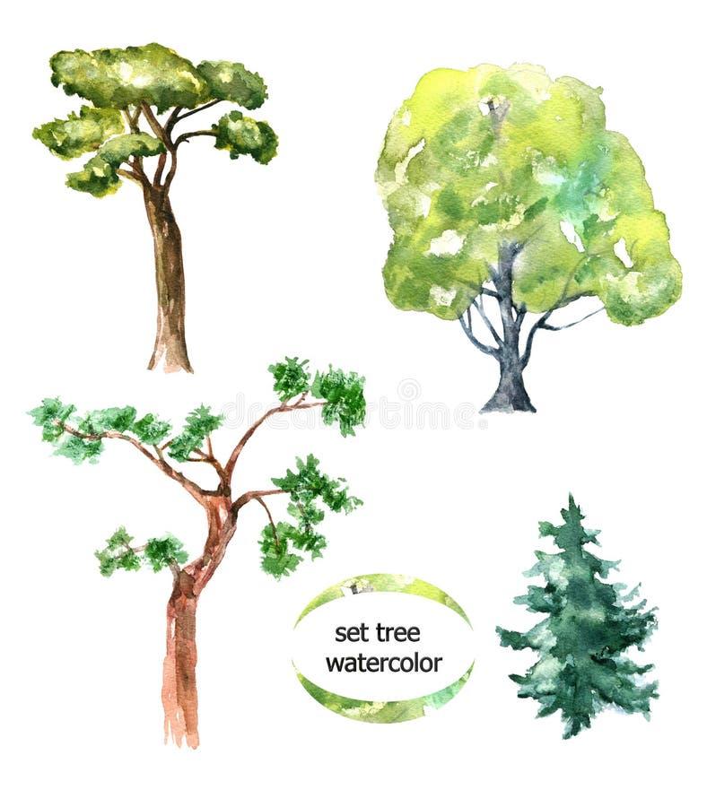 Set Tree royalty free stock photos