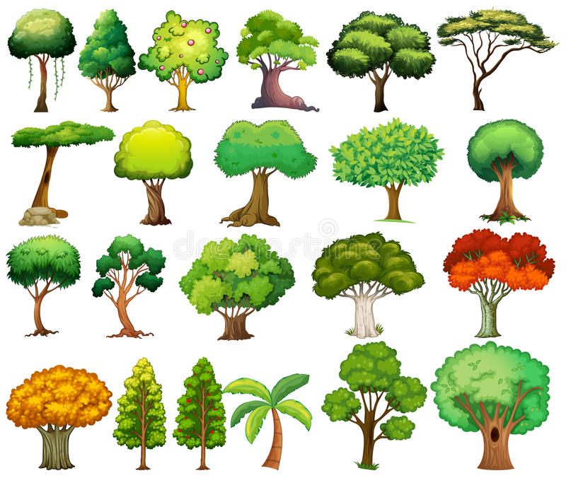 Set of trees stock illustration