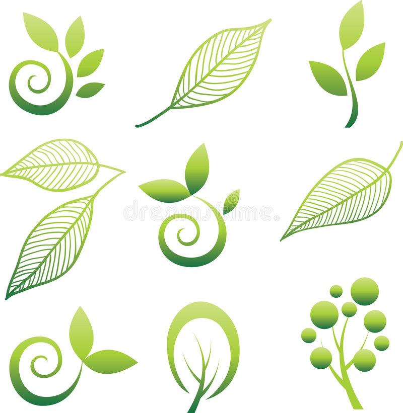 Download Set of trees and leaf. stock vector. Illustration of concept - 7772428
