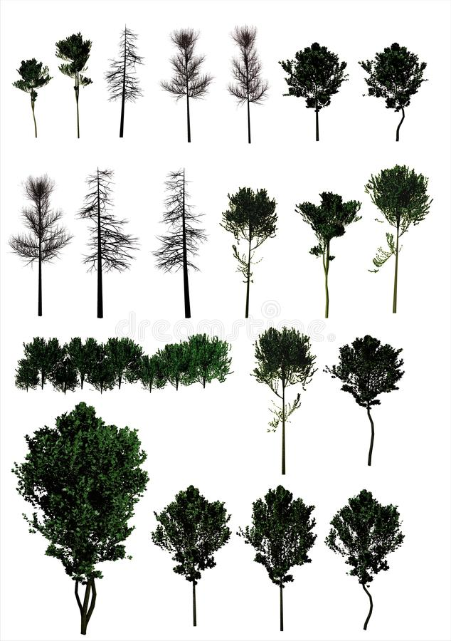 A Set Of Trees. (PNG) Royalty Free Stock Image - Image: 35273306