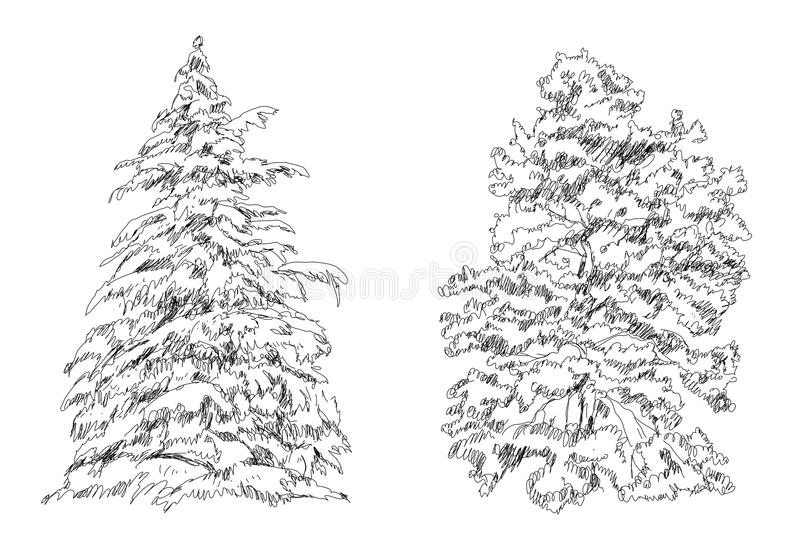 Set of Trees. Sketch collection stock illustration
