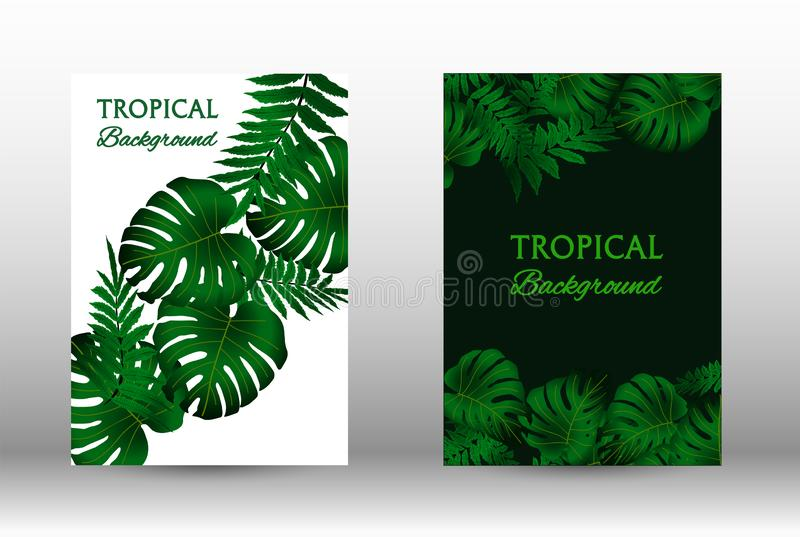 A set of tropic stock image