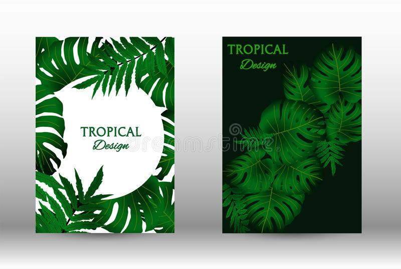 A set of tropic royalty free stock images