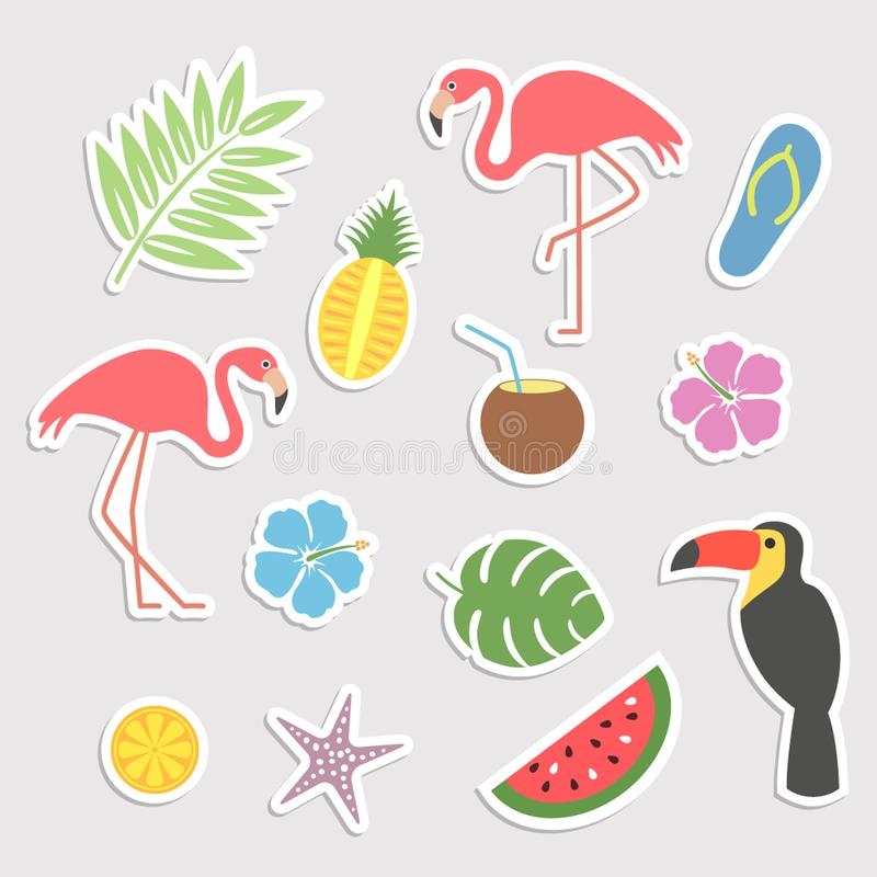 Set of tropical, exotic elements from plants, animals, birds and fruits. stickers. flat vector illustration isolate vector illustration