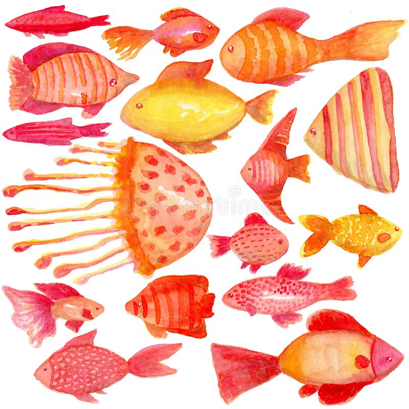 A set of tropical fish, in a watercolor style. Isolated on white background. stock illustration